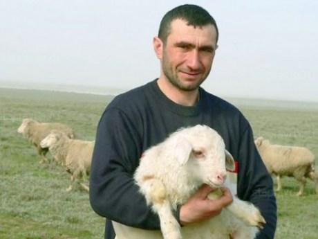 знакомства в новосибирске без регистрации объявления о